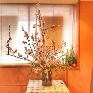 紅吉野桜とシャンパンアンリオ