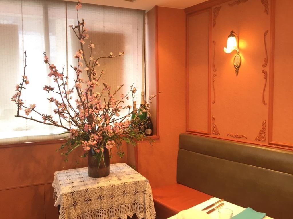紅吉野桜2016