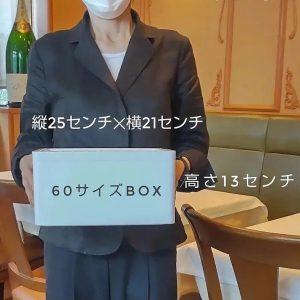 60sizebox_手持ち写真